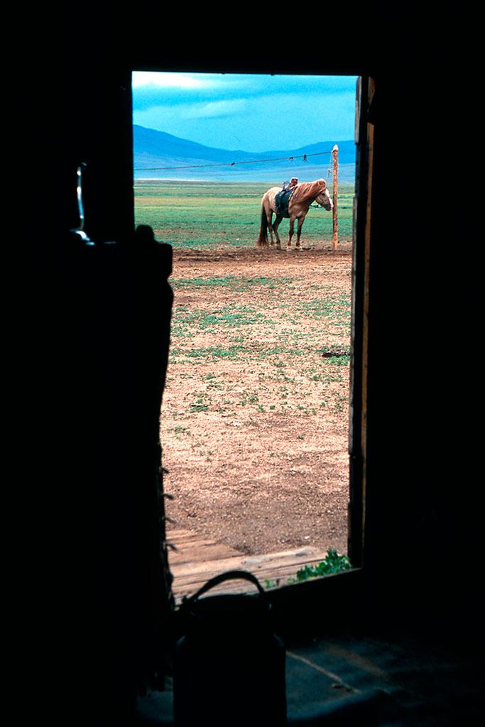 saída de ger mongol