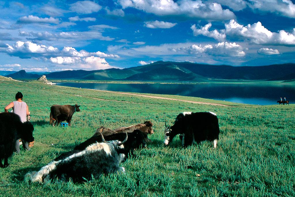 lago Terkhiin Tsagaan