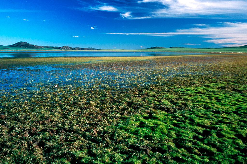 lago sharga na mongólia