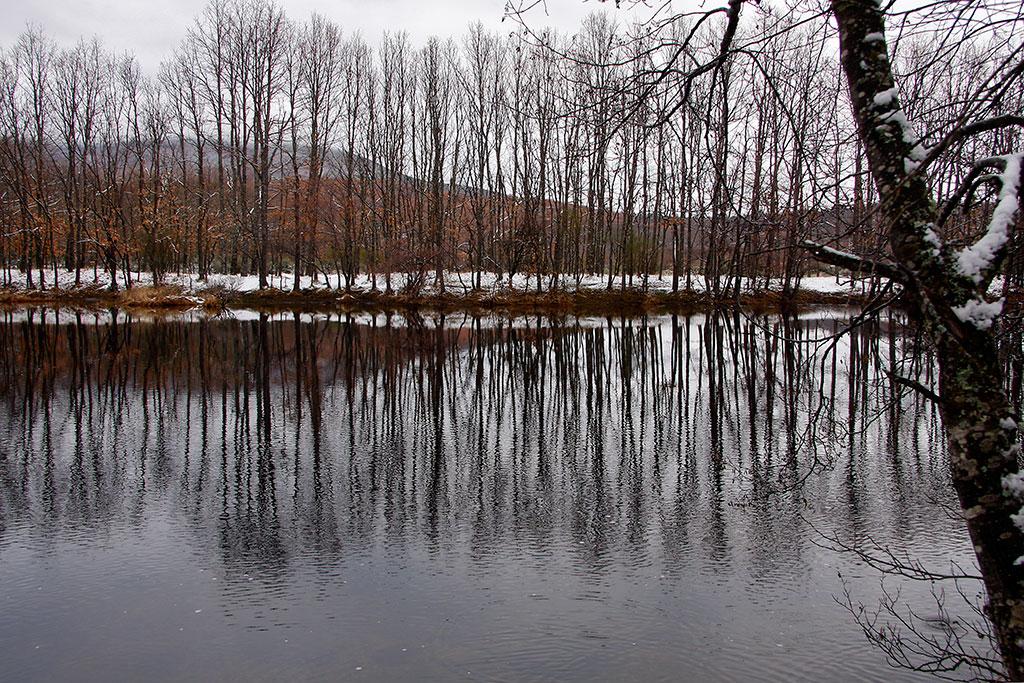 reflexos no lago de sanabria