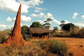 Paisagem na região de Cabo Delgado