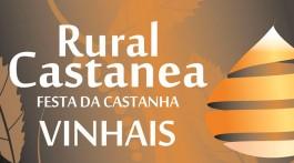 Rural Castanea em Vinhais