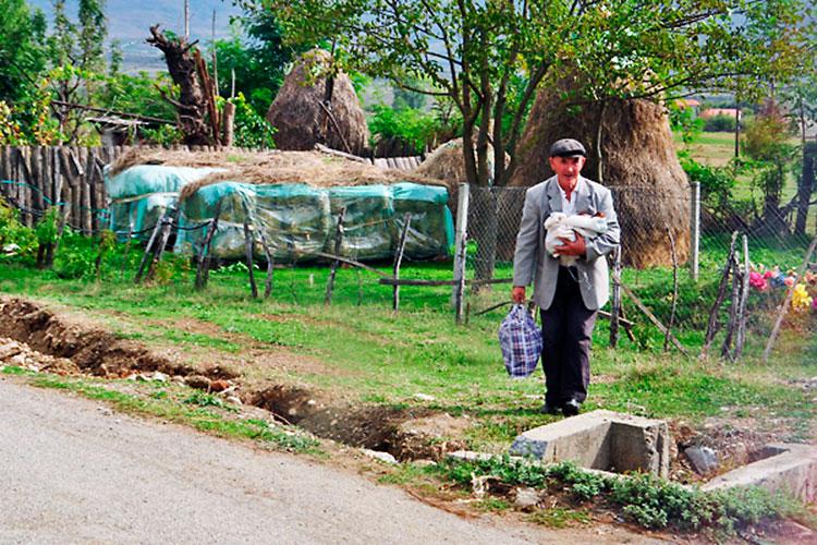homem com galinha a caminho de Tirana