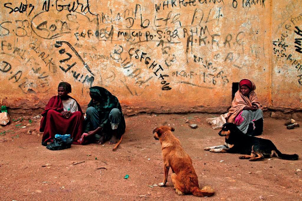 mulheres e cães