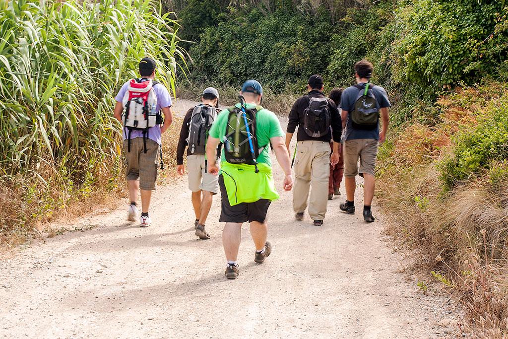 grupo de pessoas em caminho de terra