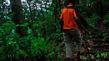 homem na selva de S. Tomé e Principe
