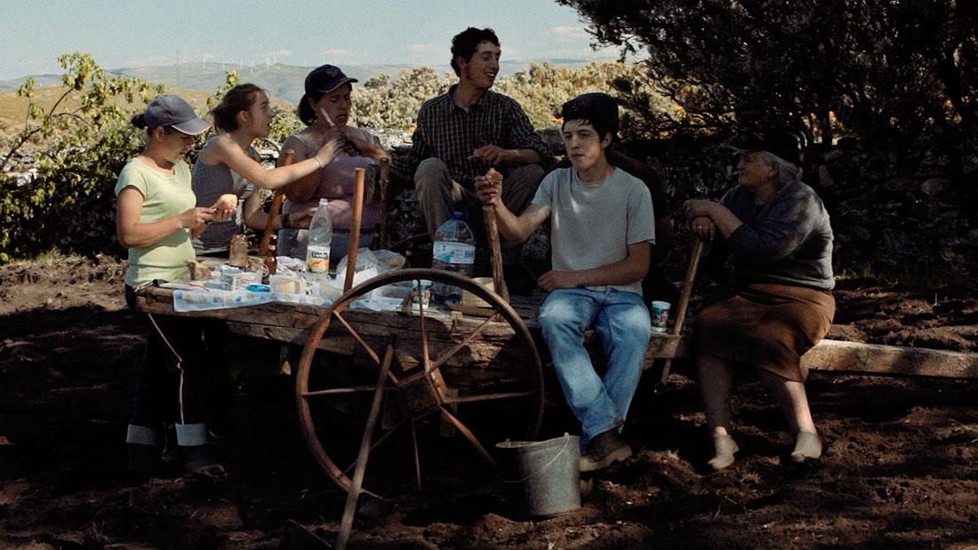 descanso de grupo em jornada agricola