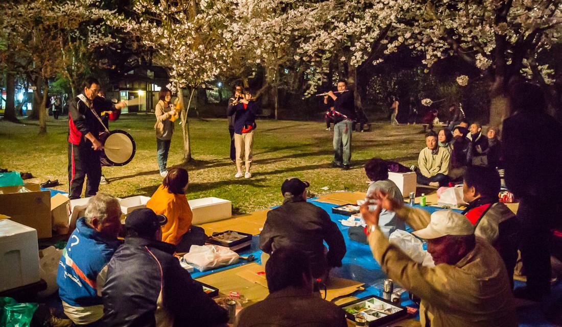 músicos numa festa em honra das cerejeiras em flor