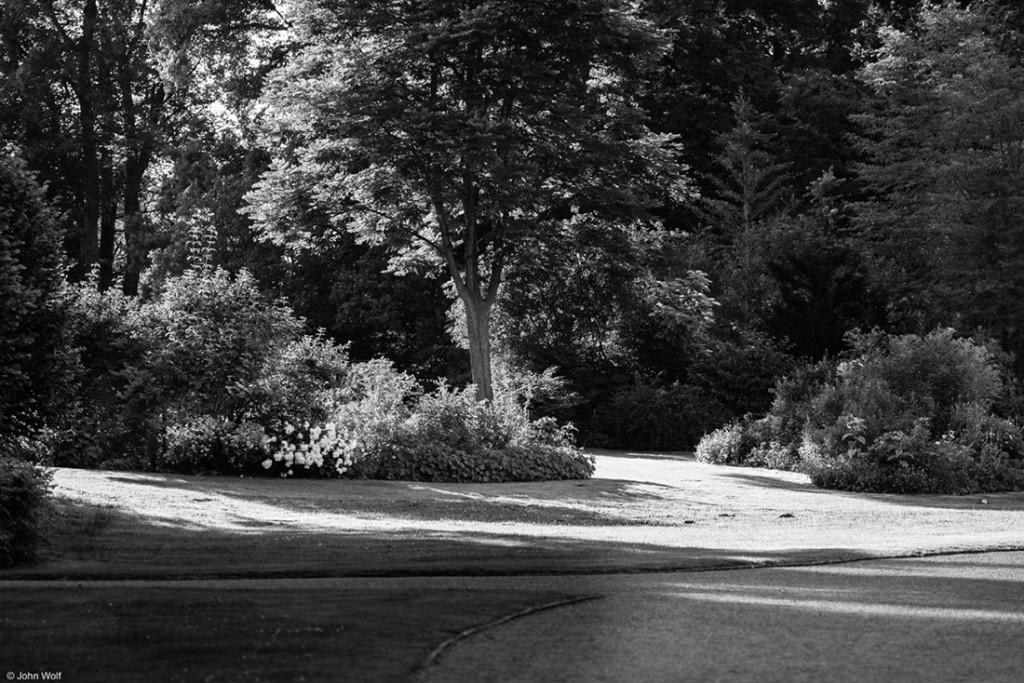 caminhos num jardim de weimar