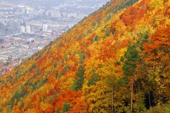 montanha junto a Brasov na Transilvânia