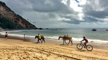 cavalos e bicicleta na praia, morro são paulo, brasil