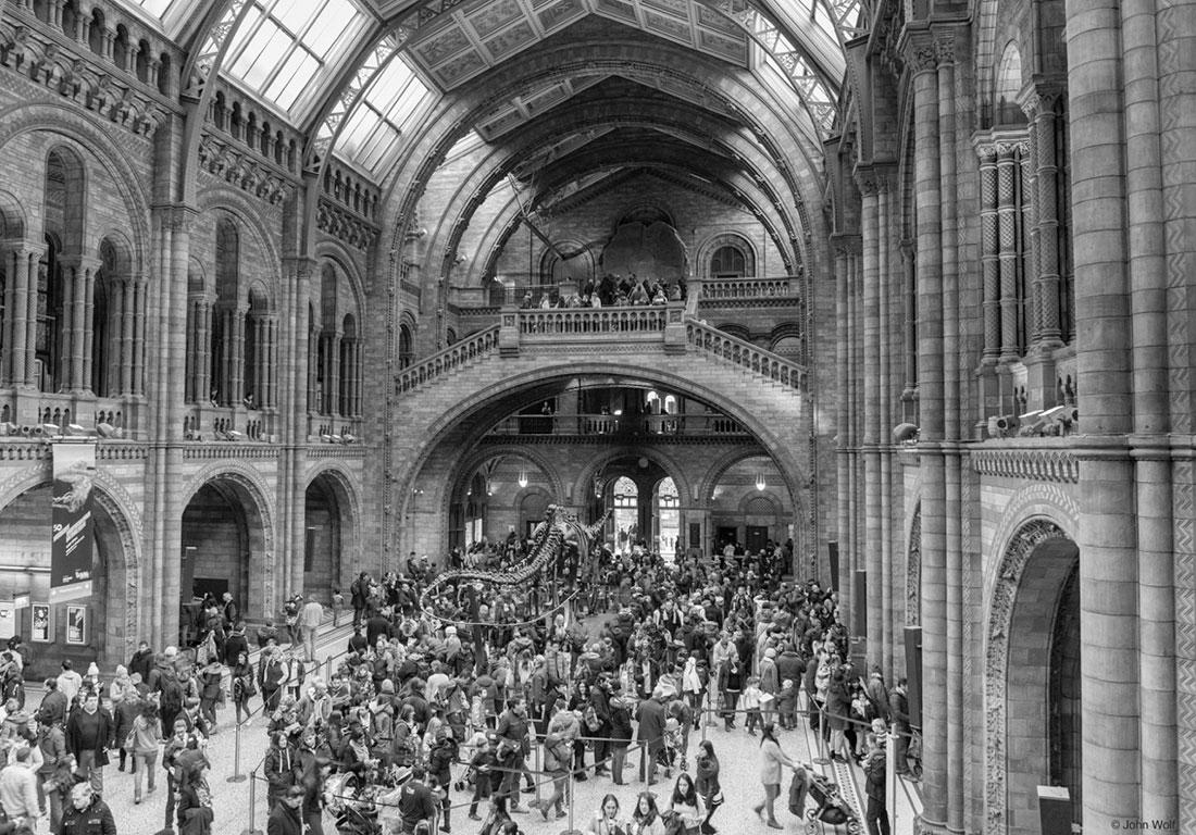 pessoas na nave principal do museu de história natural em Londres
