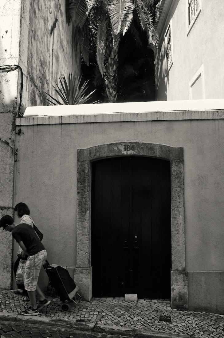 casal frente a portao para jardim com palmeiras