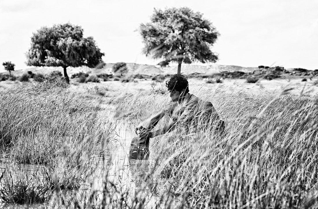 rapaz a recolher água num pequeno riacho no deserto de thar, Índia