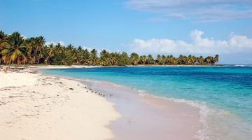 Praia de areias douradas e mar azul-turquesa cheia de coqueiros em Saona, Republica Dominicana