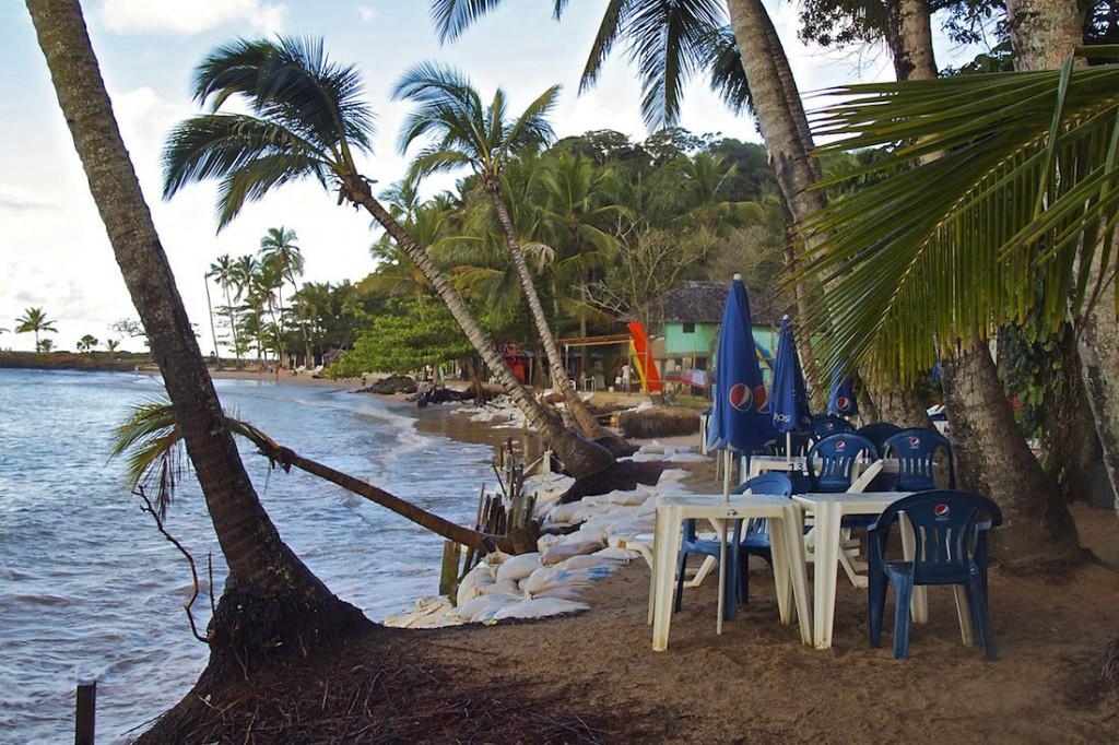 Mesas no meio de coqueiros da praia da concha em Itacaré.