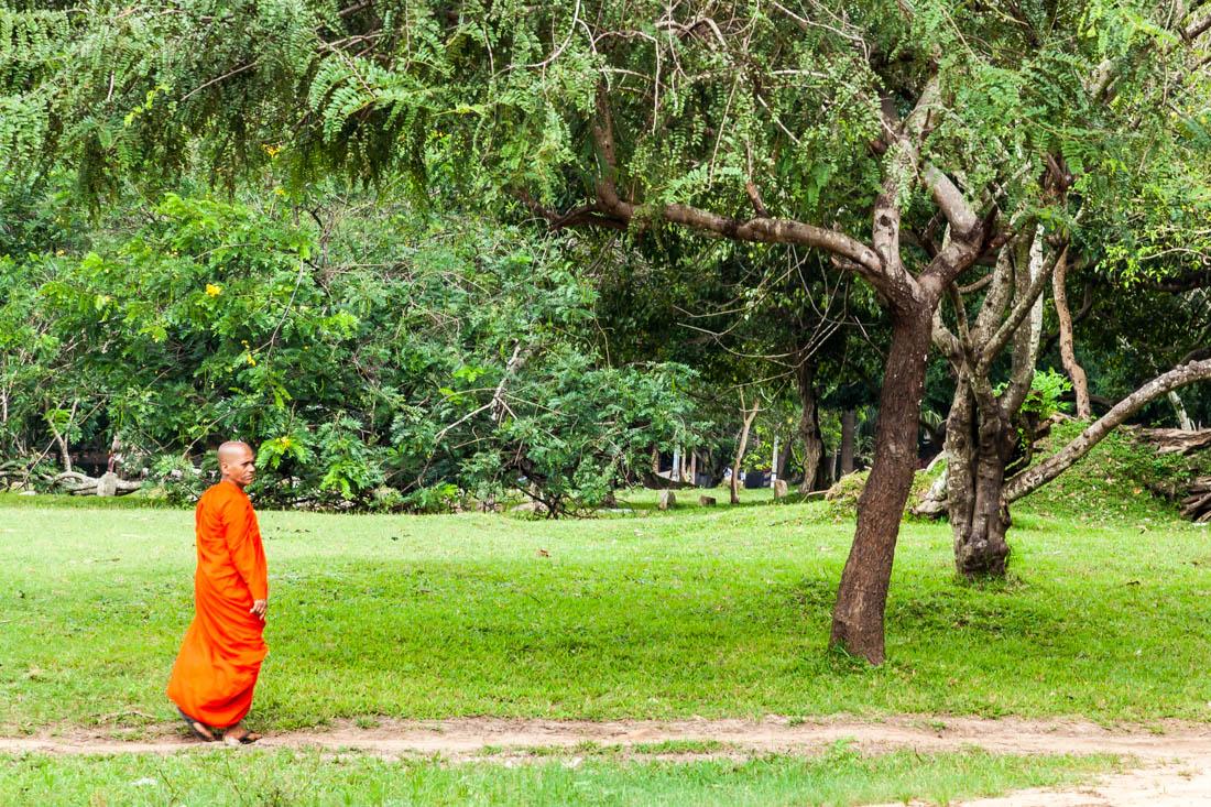 Monge budista a caminhar na envolvente entre os templos da antiga cidade de Anaradhpura.
