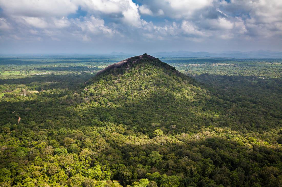 Selva serrada e Monte Pidurangala observado desde o rochedo de Sigiriya.
