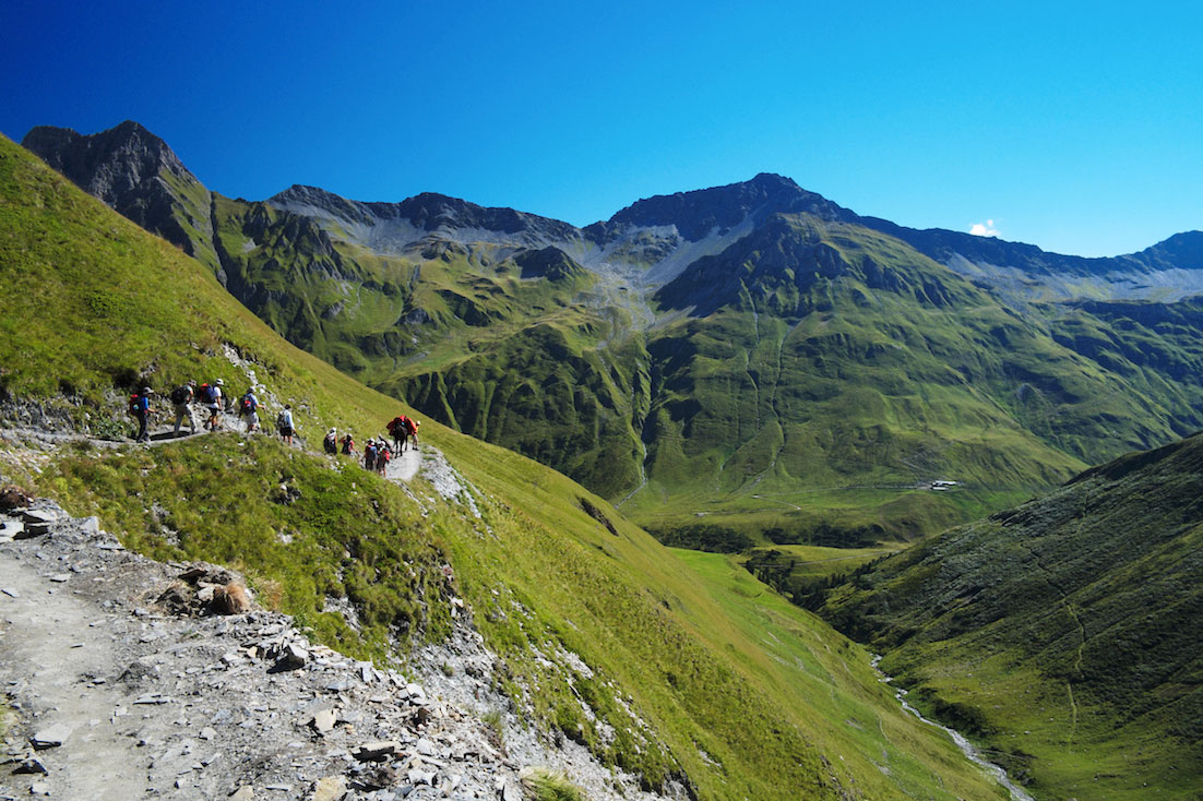 Trilho do tour do monte branco inserido numa zona muito verde da paisagem alpina.