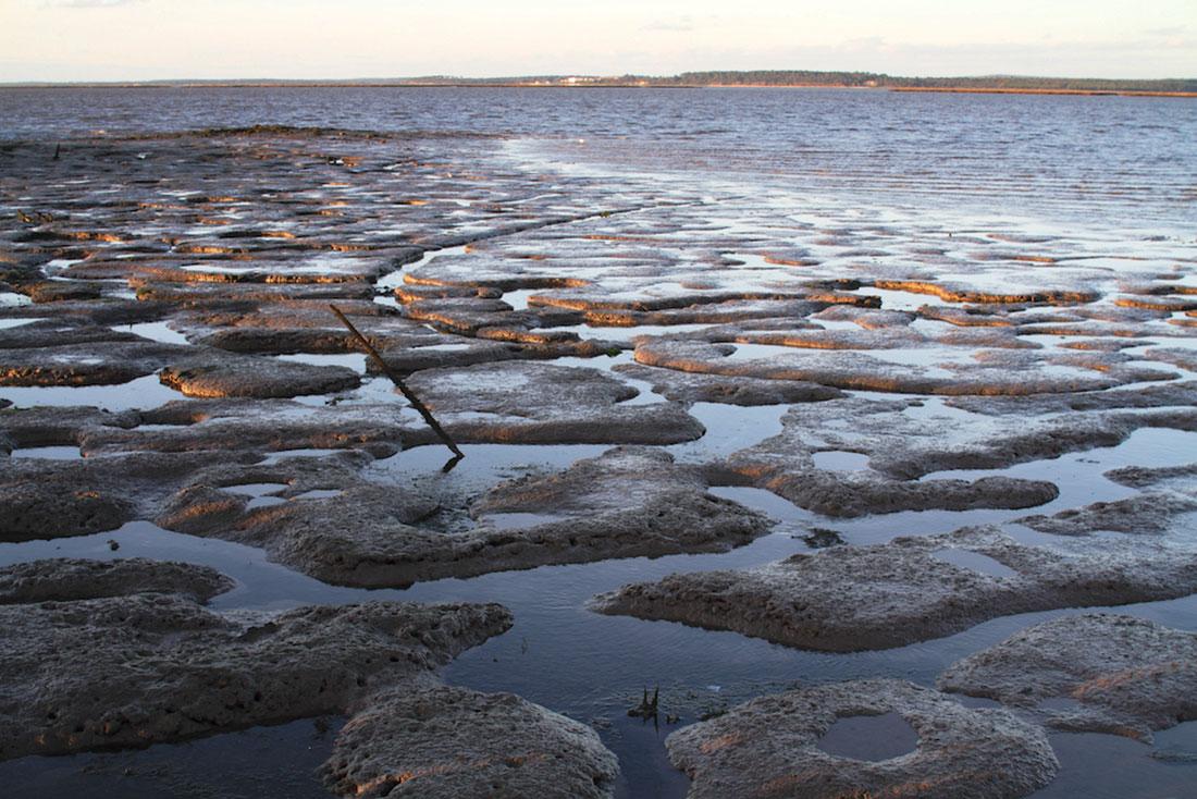 O Rio Sado em maré baixa junto ao cais palafítico da Carrasqueira.