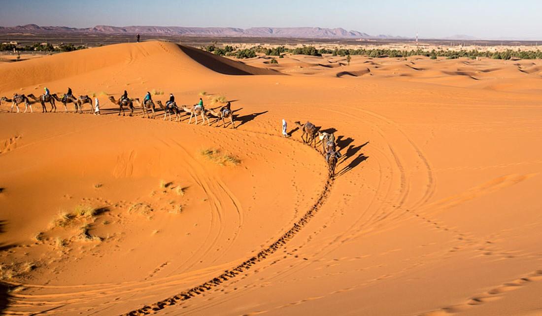 Caravana de dromedários perto de Merzouga.
