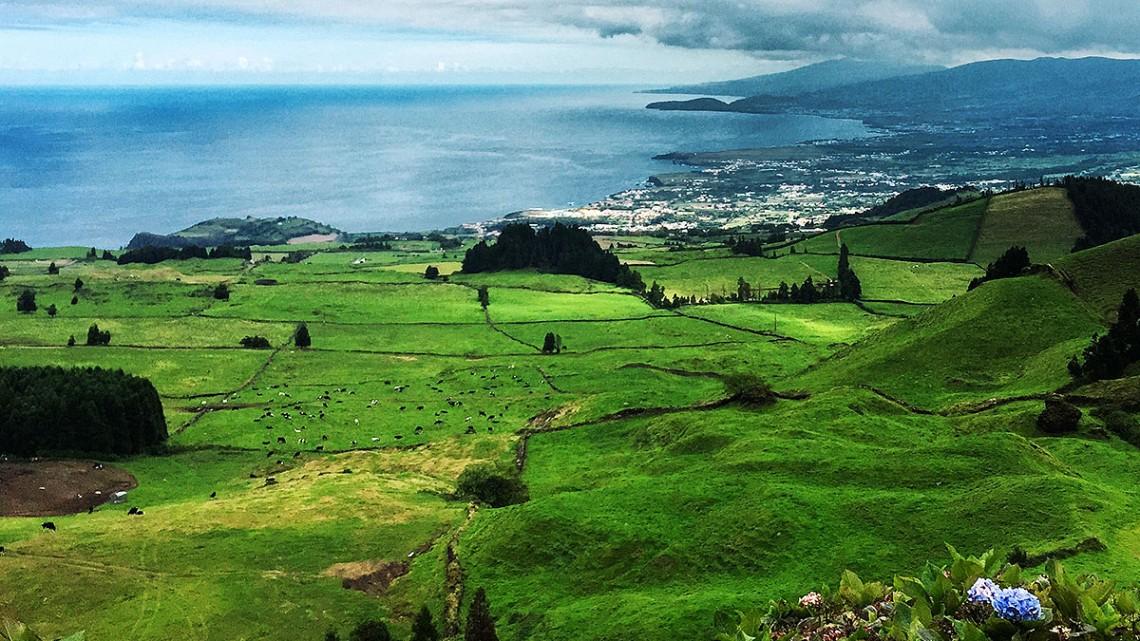 Campos verdes de pasto numa encosta que desliza até o mar, na ilha de São Miguel, Açores.