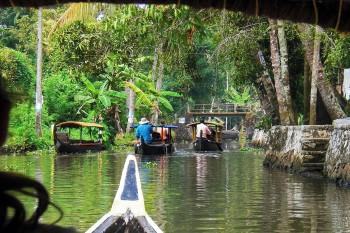 Vários barcos a transportar pessoas por entre vegetação serrada nos remansos de Alappuzha.
