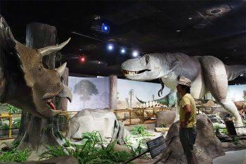 Museu de História Natural em Las Vegas, EUA